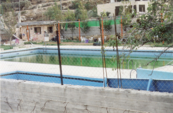 Palestinian swimming pool