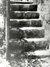 Hebron.1929